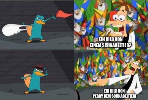 Karl zum Thema «Schnabeltier»